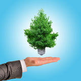 Sustainable resources, renewable energy Stock Images