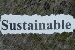 Sustainable text on a newspaper cut out. Concept Royalty Free Stock Images