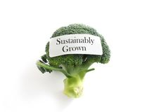 Sustainable veggie Stock Images