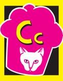 Sustantivos de la letra C de tarjeta de destello Fotografía de archivo libre de regalías