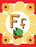 Sustantivos de la letra F de tarjeta de destello Fotos de archivo