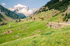 Sustenpass, Zwitserland Stock Afbeeldingen