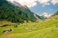 Sustenpass, Zwitserland Stock Afbeelding