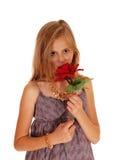 Sustentação bonita da menina rosas vermelhas fotos de stock