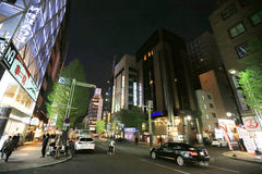 Susukino区 Susukino札幌,北海道,日本 免版税库存照片