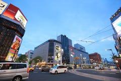 Susukino Distric札幌,日本都市风景  库存图片