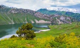 Susyngen湖 免版税库存照片