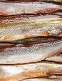 Suszący ryba zakończenie up. Zdjęcia Royalty Free