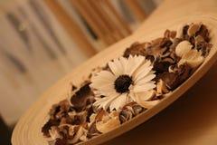 Suszę czuł kwiaty dla wnętrzy Zdjęcia Stock