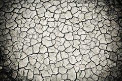 Suszę pękał glebowego brud Fotografia Stock