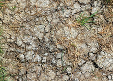 susza Spieczony suszy krakingową ziemię zdjęcie stock