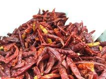suszone chili Zdjęcie Royalty Free