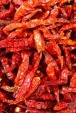 suszone chili Obraz Stock
