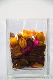 suszone kwiatki Zdjęcie Royalty Free