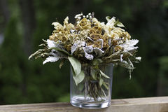suszone kwiatki Zdjęcia Royalty Free