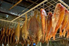 suszyć ryb Zdjęcie Stock
