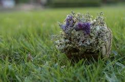 Suszy kwiatu Obrazy Stock