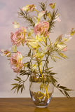 suszy kwiatu zdjęcia stock