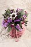 suszyć kwiaty Zdjęcie Royalty Free