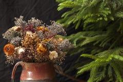 Suszy kwiaty i sosny Zdjęcie Royalty Free