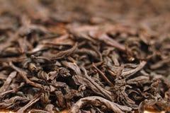 Suszy liście czarnej herbaty zakończenie Obrazy Royalty Free