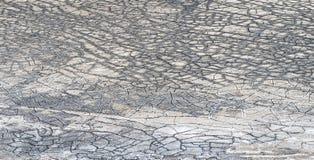 Suszy pęknięcia na dużym słonego jeziora tuza golu w Anatolia, Turcja obrazy stock