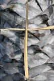 Suszy palmowego liścia setu krzyż krucyfiks na drzewka palmowego tle przeciw Zdjęcia Royalty Free