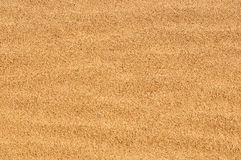 suszy piasek Zdjęcia Stock