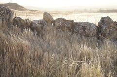 Suszy pole w Hiszpańskiej wiosce i kamieniach fotografia royalty free