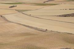 Suszy pole w Hiszpańskiej wiosce, sucha trawa, kolor żółty, drogi obrazy stock