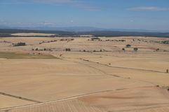 Suszy pole w Hiszpańskiej wiosce, sucha trawa, kolor żółty, niebieskie niebo z białymi chmurami obraz royalty free