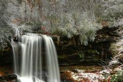 Suszy spadki I śnieg W jesieni w Natahalia lesie państwowym Troszkę Zdjęcia Stock