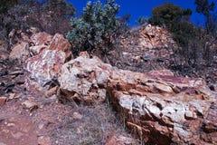 SUSZY SZCZOTKARSKĄ I ZIELONĄ roślinność MIĘDZY ampuł skałami NA wzgórzu zdjęcia royalty free