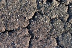 Suszy ziemię z głębokimi rozpadlinami i małymi kamieniami Fotografia Royalty Free