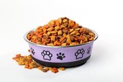 suszy zwierzę domowe kota psiego jedzenie w granulach w ślicznym pucharze Zdjęcia Stock