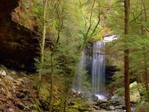 Suter Spada na Cumberland plateau w Tennessee obraz royalty free