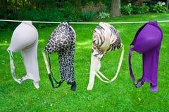 Sutiãs de secagem Imagens de Stock