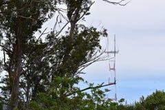 Sutro Góruje jak widzieć od Mt Davidson San Fransisco, 9 obrazy stock