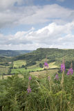Sutton Bank Landscape, Noord-York legt vast Royalty-vrije Stock Foto's