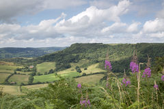 Sutton Bank Landscape, York du nord amarre Images stock