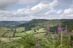 Sutton Bank Landscape, York norte amarra Imagens de Stock