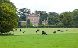 Sutton Hall and Grounds Royalty Free Stock Photo