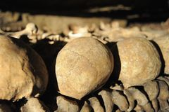 Suture de catacombes Photographie stock