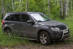 SUV本质上在森林里 库存图片