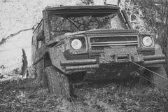 SUV è estratto dalla pozza di fango dall'argano dell'automobile Immagine Stock