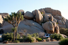 SUV in a camping space at in desert. A white car, suv parked in a camping space in Joshua Tree National Monument in California stock photography