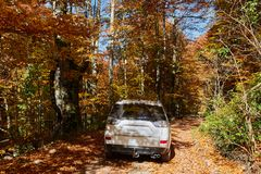 SUV car on the road. SUV 4x4 car on the road in the autumn Royalty Free Stock Photo