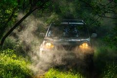 Suv del coche en luces brumosas del bosque encendido Imagen de archivo