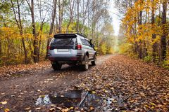 SUV on dirt road in autumn forest Stock Photo