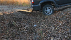 SUV drives through a ditch. In the woods stock video footage